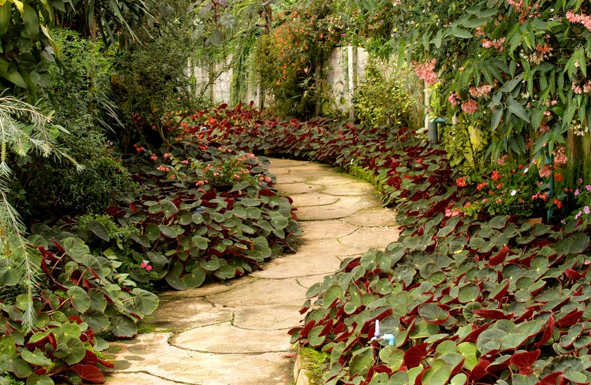 Tips for Choosing a Landscaping Company