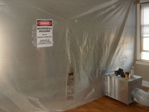Residential-Mold-Removal-